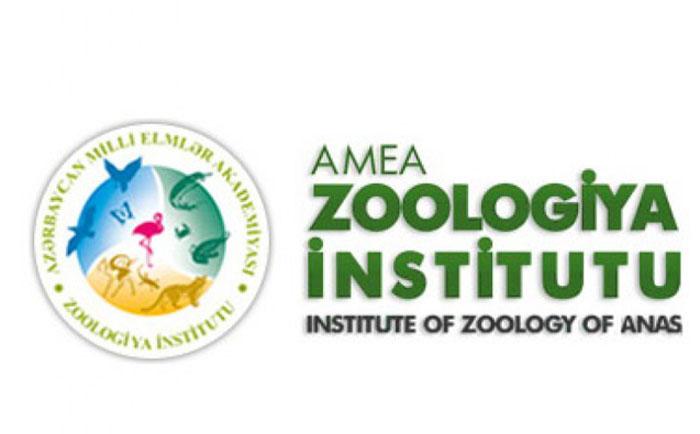 Zoologiya İnstitutunda Vətən müharibəsinə həsr olunan tədbir keçiriləcək