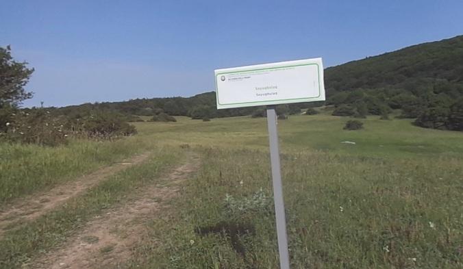 AMEA-nın Xızı rayonunda yerləşən torpaq sahələri ilə bağlı məlumat