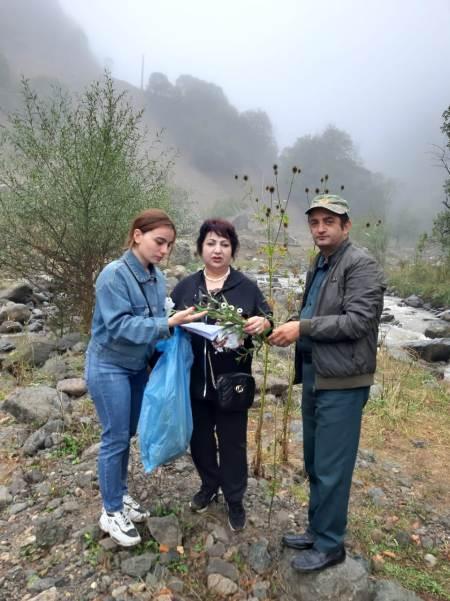 Dendrologiya İnstitutunun əməkdaşları Göygöl Milli Parkında tədqiqatlar aparıblar