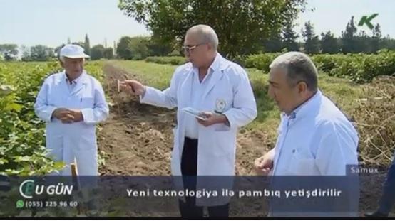 Radiasiya texnologiyaları kənd təsərrüfatında