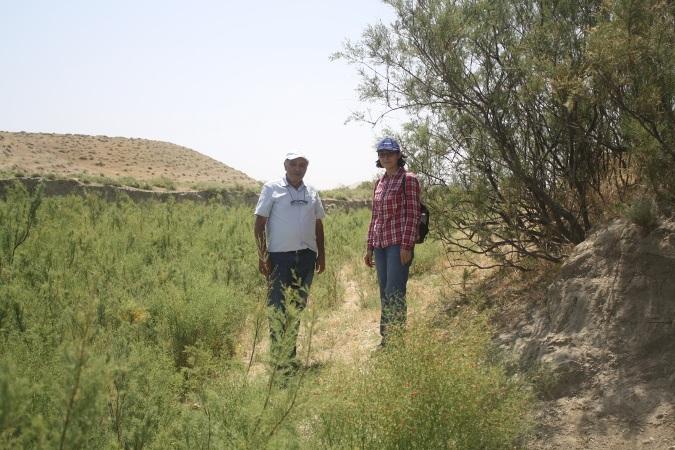 Mərkəzi Nəbatat Bağının alimləri Xızı və Abşeron rayonlarında bitki müxtəlifliyinin tədqiqi ilə bağlı monitorinqlər aparıblar