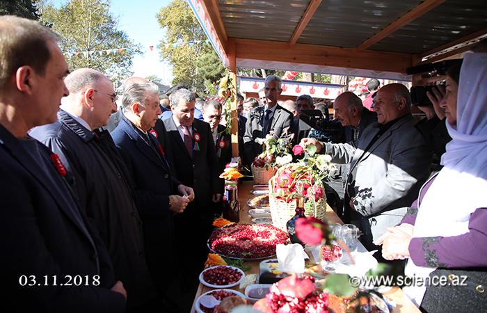 AMEA nümayəndə heyəti Göyçayda XIII Nar festivalında iştirak edib